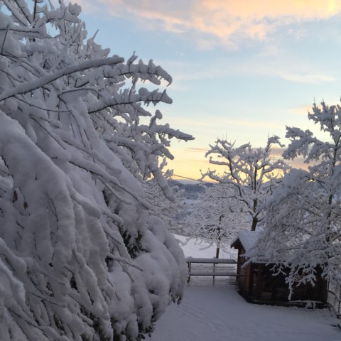 Montese neve 22 novembre 2015