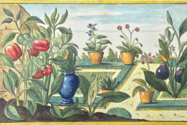 Un sabato all'Orto Botanico di Bologna